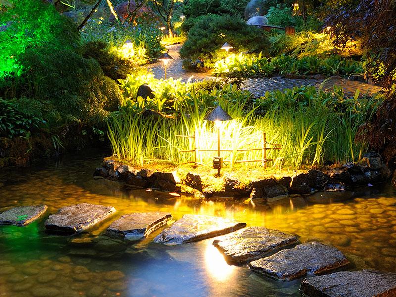 Teich Licht im Garten Mainz Wörrstadt Nieder-Olm